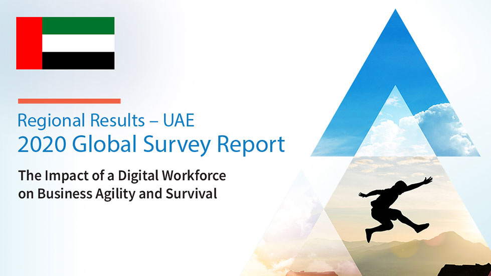 global-survey-report